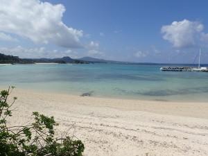 沖縄で水中カメラ